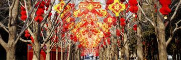春节庙会(地坛公园)预展(2)2020-1-21 c