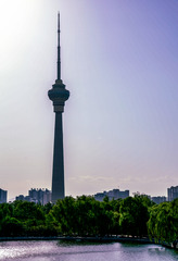 玉渊潭公园风光(1)2019-4-30 e