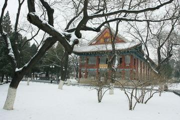 红楼与白雪