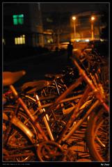 北大47#前的自行车