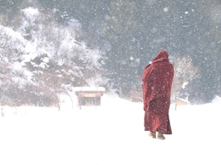 雪裡送福音