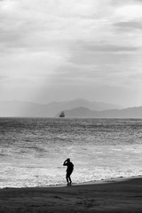 海岸边寻觅