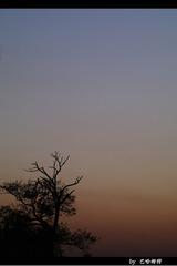 圆明园的黄昏