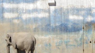 gagen的动物园