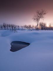 冬天的一颗心