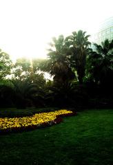 绿地阳光-上海