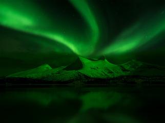 极光映山绿